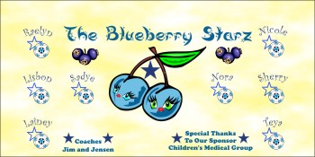 Blueberries Soccer Banner - Custom Blueberries Soccer Banner