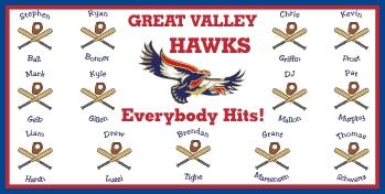 Boise Hawks Baseball Banner - Custom Boise Hawks Baseball Banner