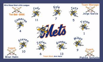 Birmingham Mets Baseball Banner - Custom Birmingham Mets Baseball Banner