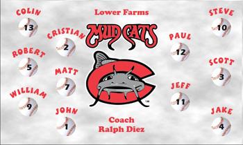 Carolina Mudcats Baseball Banner - Custom Carolina Mudcats Baseball Banner