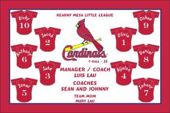 Cardinals Baseball Banner - Custom Cardinals Baseball Banner