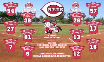 Reds Baseball Banner - Custom Reds Baseball Banner