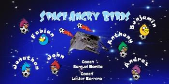 Angry Birds Soccer Banner - Custom Angry BirdsSoccer Banner
