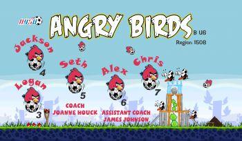 Angry Birds Soccer Banner - Custom Angry Birds Soccer Banner