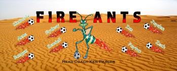 Ants Soccer Banner - Custom AntsSoccer Banner