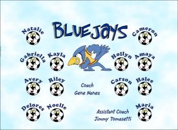 Bluejays Soccer Banner - Custom BluejaysSoccer Banner