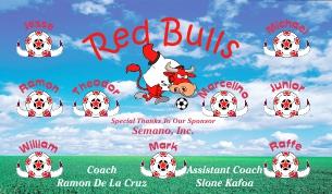Bulls Soccer Banner - Custom Bulls Soccer Banner
