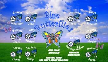 Butterflies Soccer Banner - Custom ButterfliesSoccer Banner