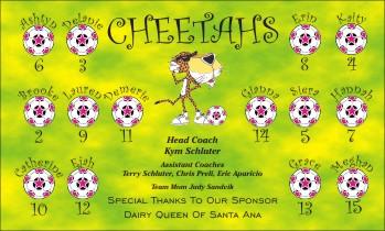 Cheetahs Soccer Banner - Custom CheetahsSoccer Banner