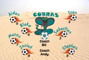 Cobras Soccer Banner - Custom CobrasSoccer Banner