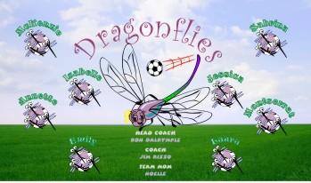 Dragonflies Soccer Banner - Custom DragonfliesSoccer Banner