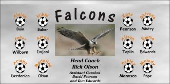 Falcons Soccer Banner - Custom FalconsSoccer Banner