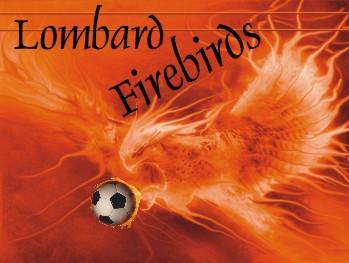 Firebirds Soccer Banner - Custom FirebirdsSoccer Banner