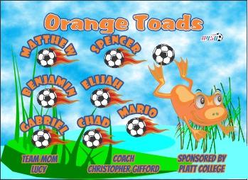 Frogs Soccer Banner - Custom FrogsSoccer Banner