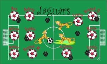 Jaguars Soccer Banner - Custom JaguarsSoccer Banner