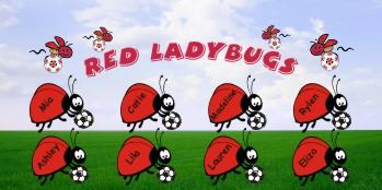 Ladybugs Soccer Banner - Custom LadybugsSoccer Banner