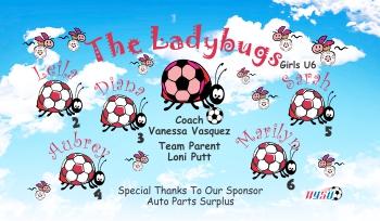 Ladybugs Soccer Banner - Custom Ladybugs Soccer Banner
