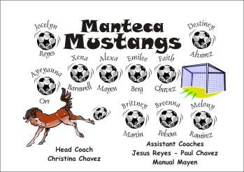 Mustangs Soccer Banner - Custom MustangsSoccer Banner