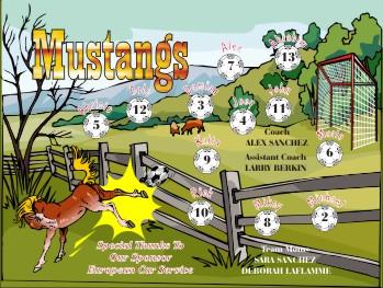 Mustangs Soccer Banner - Custom Mustangs Soccer Banner