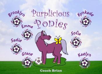 Ponies Soccer Banner - Custom PoniesSoccer Banner