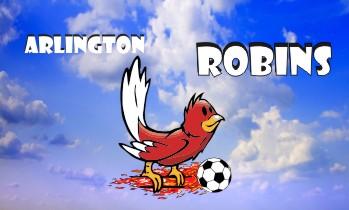 Robins Soccer Banner - Custom RobinsSoccer Banner