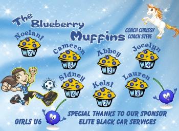 Blueberry Muffins Soccer Banner - Custom Miscellaneous Soccer Banner