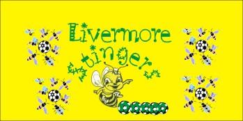Stingers Soccer Banner - Custom Stingers Soccer Banner