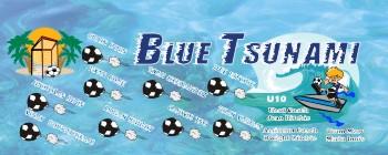 Tsunami Soccer Banner - Custom TsunamiSoccer Banner