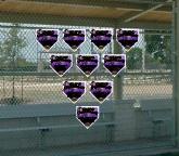 TeamsBannerCustom Home Plate Banners