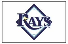 Tampa Bay Rays Custom Baseball Banner TeamsBanner